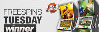 net casino free spins
